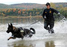K9 pursuit